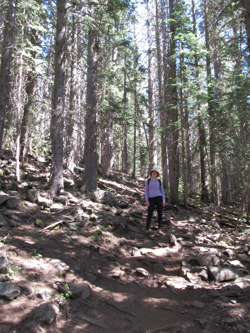 Climbing Humphreys
