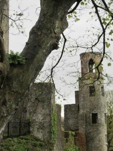 Blarney Castle Ireland 2012